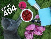 错误404页,在绿色草本的A可爱的夏天野餐由宠物 在一块蓝色布料的一顿野餐放置了, A樱桃杯子, a 图库摄影