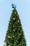 锚点圣诞树 免版税库存照片