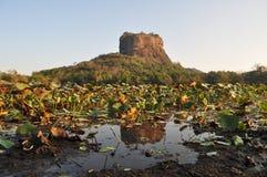 锡吉里耶狮子岩石堡垒在斯里兰卡 免版税库存图片