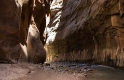 锡安使锡安国家公园9狭窄 免版税图库摄影