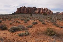 锡安国家公园沙漠和山 免版税库存照片