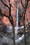 锡安国家公园瀑布 库存照片