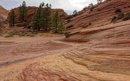 锡安国家公园,犹他的岩层 免版税图库摄影