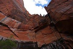 锡安国家公园Cliffside 免版税库存图片