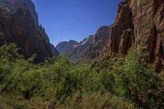 锡安峡谷在锡安国家公园 免版税库存图片