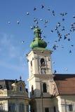 锡比乌transylvania 免版税库存图片