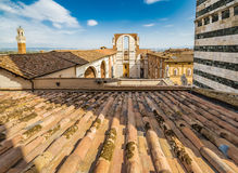 锡耶纳大教堂屋顶  库存照片