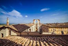 锡耶纳大教堂屋顶  免版税库存图片