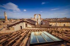 锡耶纳大教堂屋顶  免版税库存照片