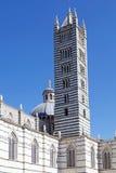 锡耶纳大教堂的钟楼,托斯卡纳,锡耶纳,意大利 免版税库存图片
