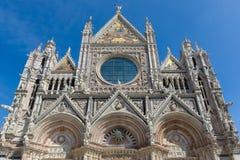 锡耶纳大教堂,致力保佑的圣母玛丽亚的做法 库存图片