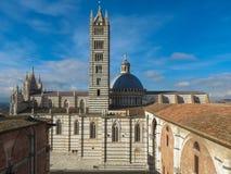 锡耶纳,大教堂的看法 免版税库存图片