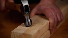 锤击钉子入新鲜的木材 股票录像