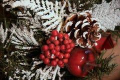 锥体和分支与雪,红色苹果,莓果 美丽 库存照片