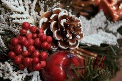锥体和分支与雪,红色苹果,莓果 库存照片