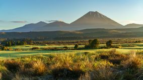 锥体火山,日出,瑙鲁霍伊火山,新西兰33 免版税库存图片