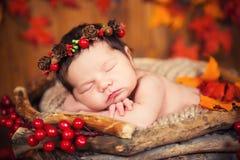 锥体花圈的逗人喜爱的新出生的在一个篮子的婴孩和莓果与秋叶 免版税库存照片