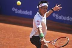 锦织圭打开2014 ATP 500 免版税库存图片