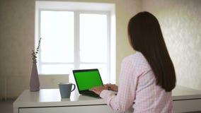 键入在个人计算机键盘的绿色屏幕显示器便携式计算机妇女 股票录像
