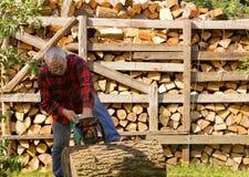 锯剪切树干 图库摄影