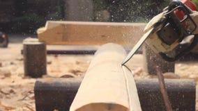 锯家的锯切木头 股票视频