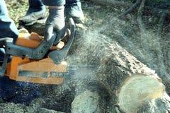 锯工作 免版税库存图片