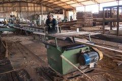 锯木厂的工作者 库存图片