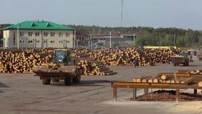 锯木厂,在锯木厂的大量手段,在锯木厂的现代机械 股票录像