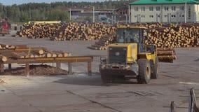 锯木厂,在锯木厂的大量手段,在锯木厂的现代机械 股票视频