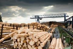 锯木厂 库存照片