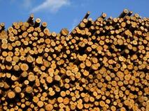 锯木材 库存图片