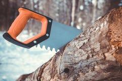 锯的树干一把引形钢锯 库存图片