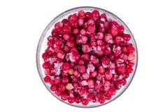 镀在白色背景的冷冻红浆果 收获莓果为冬天 图库摄影