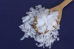 镁氯化物Nigari剥落 库存照片