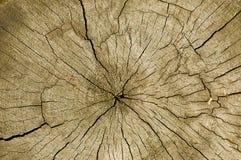 镇压剪切木材 图库摄影