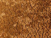 镇压被研的土壤 免版税图库摄影