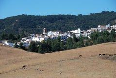 镇用增白剂擦, Jimena de la弗隆特里,西班牙。 库存图片