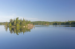 镇静早晨在北部森林 图库摄影