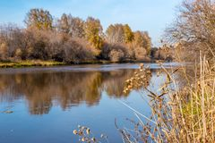 镇静河在秋天 免版税库存图片