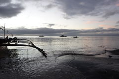 镇静海滨在黎明 免版税库存照片