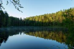 镇静湖在森林里 库存图片