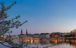 镇静阿尔斯坦河美好的全景有汉堡城镇厅的-在大厦后的Rathaus在晚上 金黄 库存照片
