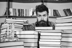 镇静面孔的人在堆书之间,当学习在图书馆里,在背景时的书架 珍藏书籍者概念 免版税库存图片