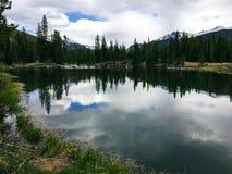 镇静Mountain湖反射的树 免版税库存照片