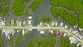 镇鸟瞰图在美洲红树 锡亚高岛,菲律宾 股票录像