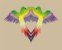 镜子五颜六色的鹦鹉 免版税库存图片