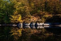 镜子般的河 库存图片
