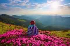 镶边格子花呢披肩的女孩坐在杜鹃花中的草坪 免版税库存图片