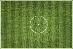 镶边橄榄球场绿色 免版税图库摄影