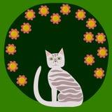 镶边猫前面开花的灌木 免版税库存照片